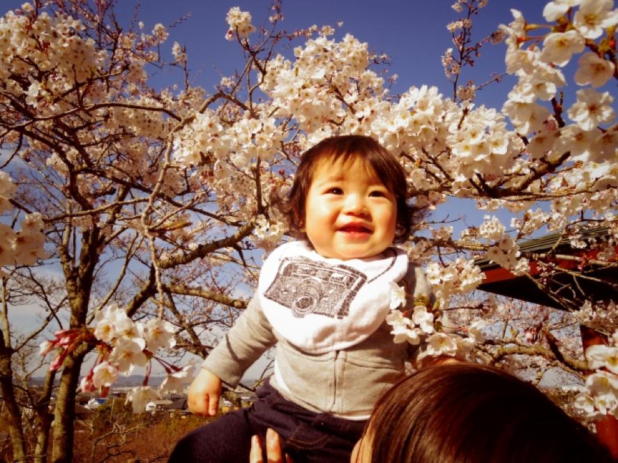 赤ちゃん花見