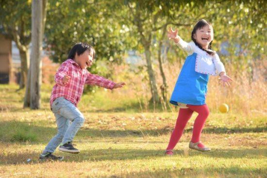 幼稚園と保育園